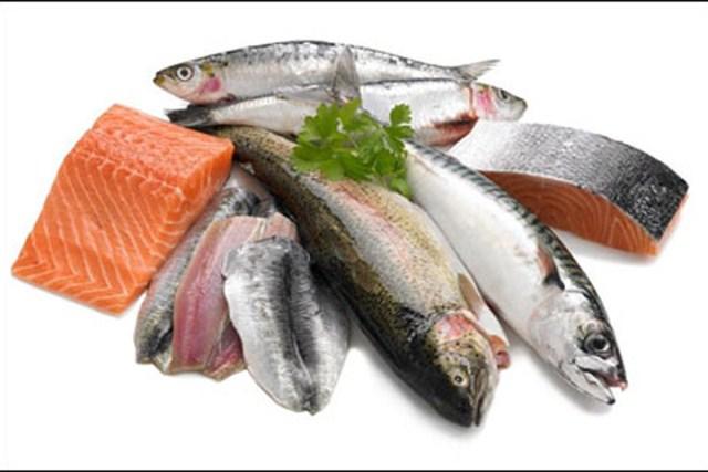 Những loại cá tốt cho xương khớp